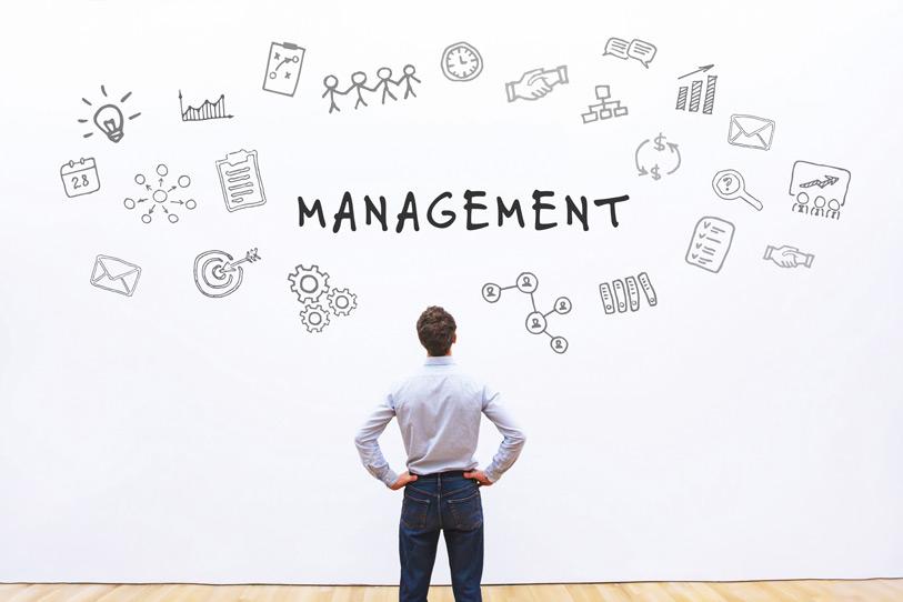 Management de transition : c'est quoi au juste ?