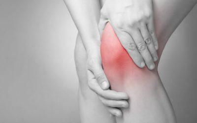 Collagène de type II non dénaturé et arthrose